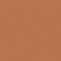 Outlawed Orange paint color DET465 #B67350