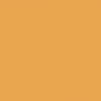 Zucchini Flower paint color DET478 #E8A64E