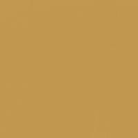 Where Buffalo Roam paint color DET480 #C19851