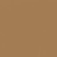 Burnt Butter paint color DET483 #A47C53