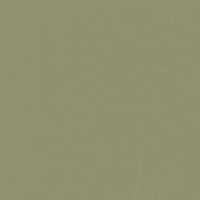 Desert Sage paint color DET505 #90926F