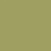 Gothic Revival Green paint color DET507 #A0A160