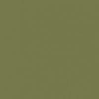 Verdant Views paint color DET508 #75794A