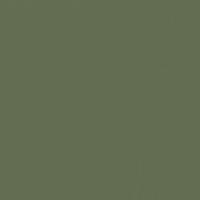 Hinterland paint color DET509 #616C51