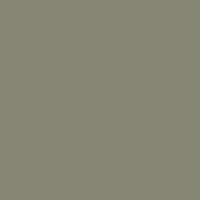 Gunsmoke paint color DET510 #878573