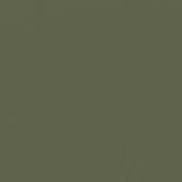 Botanical Garden paint color DET518 #5E624A