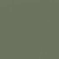 Shutters paint color DET519 #6C705E