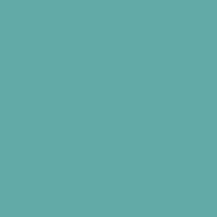 Veranda paint color DET543 #61A9A5