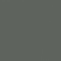 Charcoal Briquette paint color DET601 #5D625C