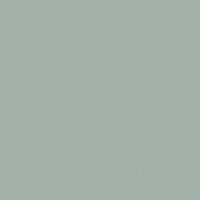 Life Aquatic paint color DET607 #A2B0A8