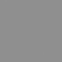 Stieglitz Silver paint color DET612 #8D8F8E