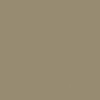Tawny Owl paint color DET640 #978B71