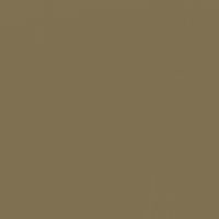 Raw Umber paint color DET658 #7E6F4F