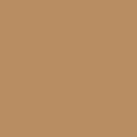 Mission Gold paint color DET685 #B78D61