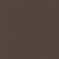 Spiced Hot Chocolate paint color DET691 #53433E