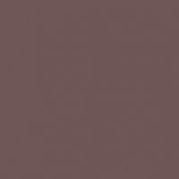 Bourbon Truffle paint color DET699 #6C5654