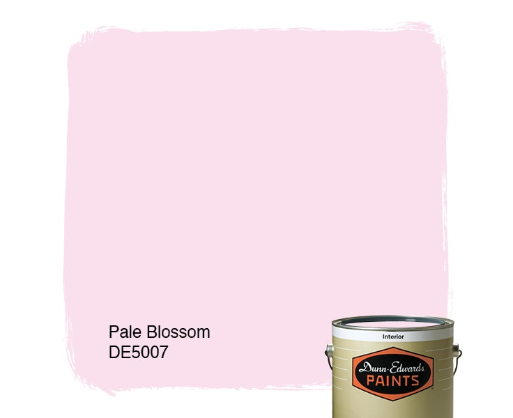 Pale Blossom paint color DE5007