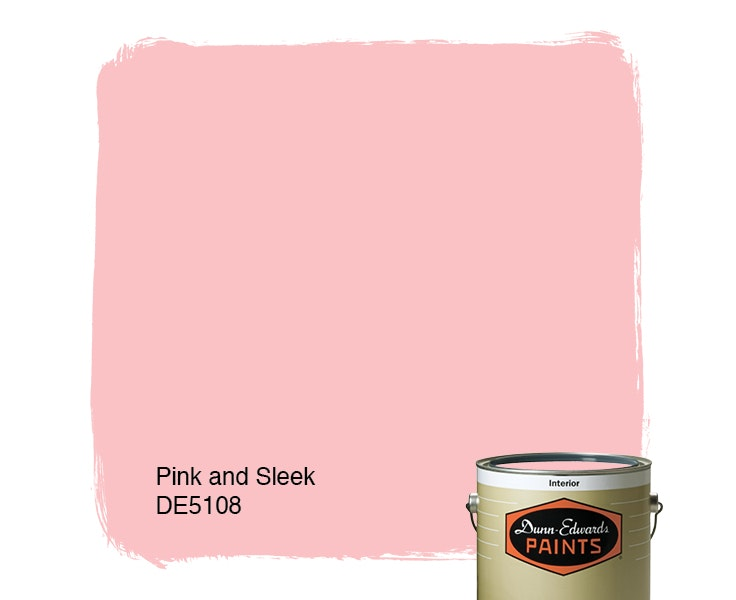 Pink and Sleek paint color DE5108
