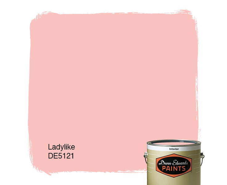 Ladylike paint color DE5121