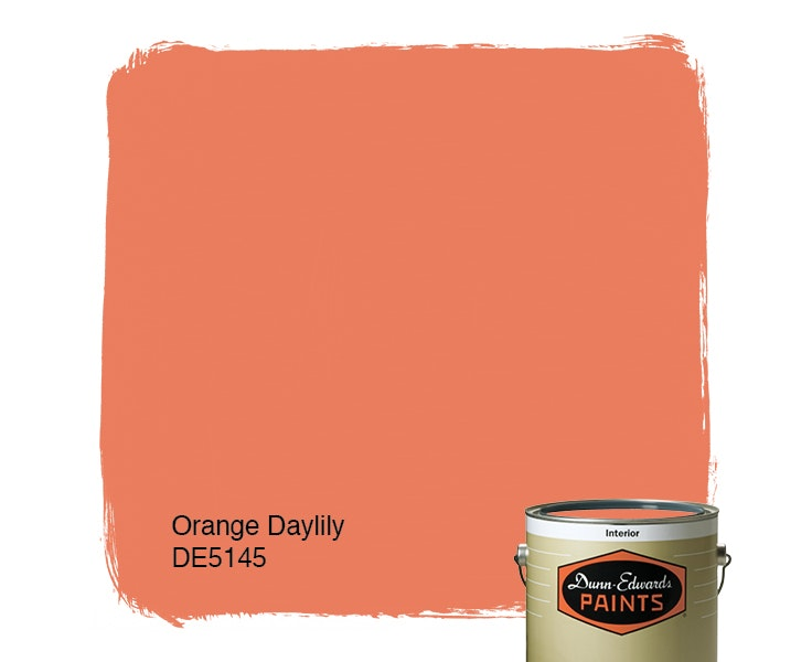 Orange Daylily paint color DE5145