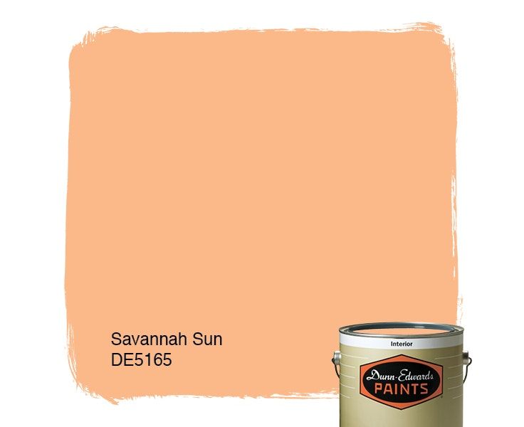 Savannah Sun paint color DE5165