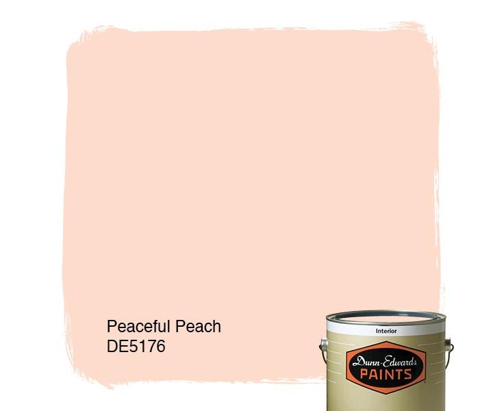 Peaceful Peach paint color DE5176