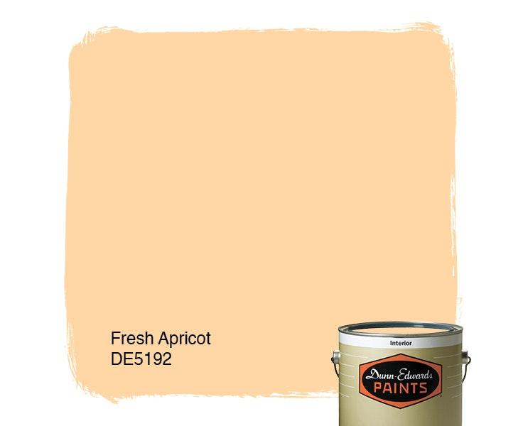 Fresh Apricot paint color DE5192