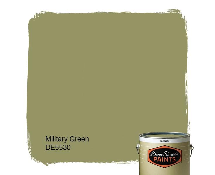 Military Green paint color DE5530