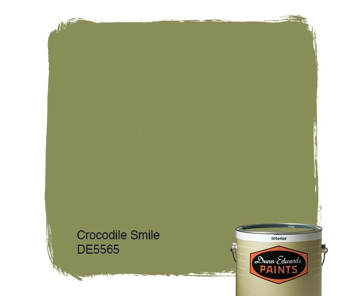 Crocodile Smile paint color DE5565