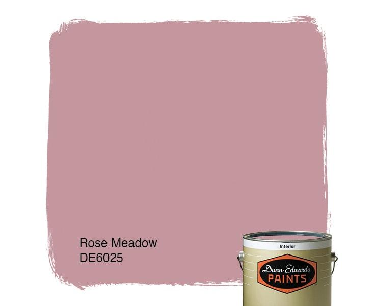 Rose Meadow paint color DE6025
