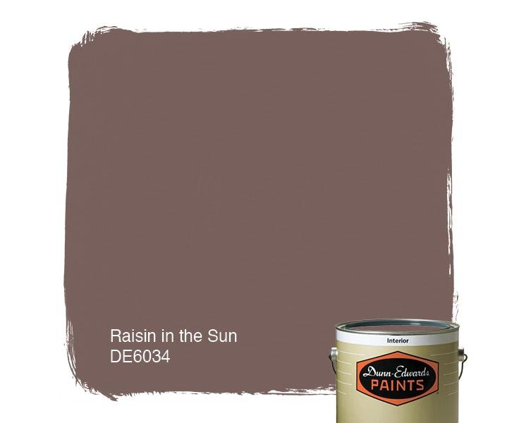 Raisin in the Sun paint color DE6034