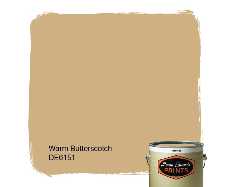 Warm Butterscotch paint color DE6151