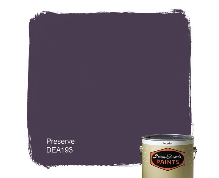 Preserve paint color DEA193
