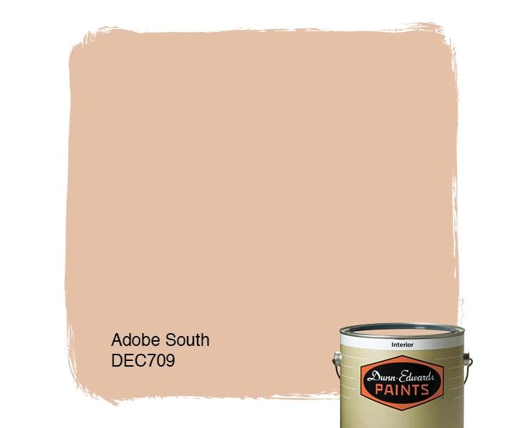 Adobe South paint color DEC709
