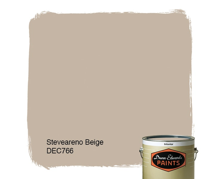 Steveareno Beige paint color DEC766