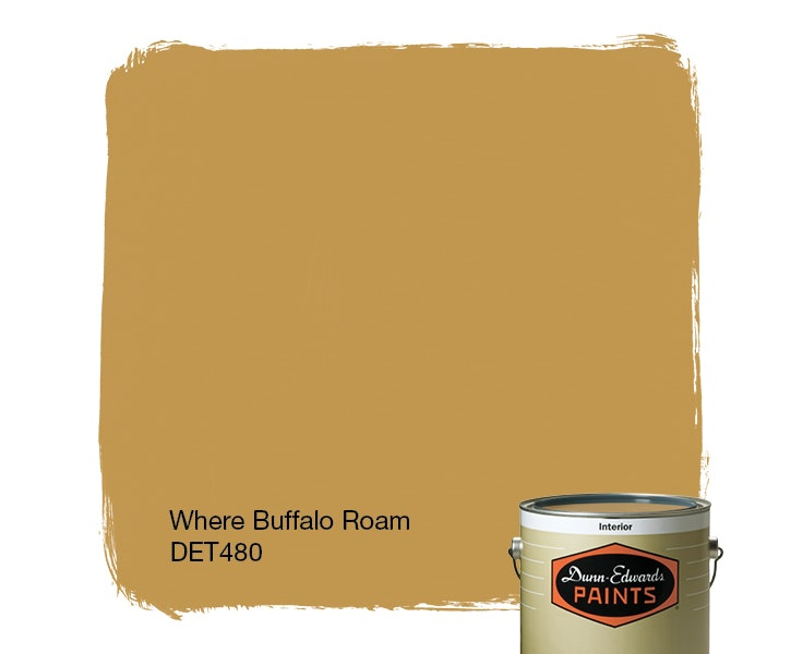 Where Buffalo Roam paint color DET480