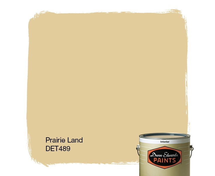 Prairie Land paint color DET489