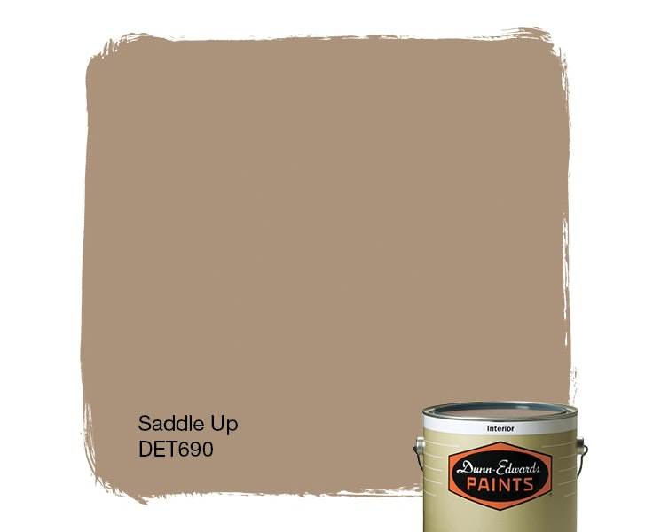 Saddle Up paint color DET690